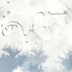 Pochette CD Linnommable